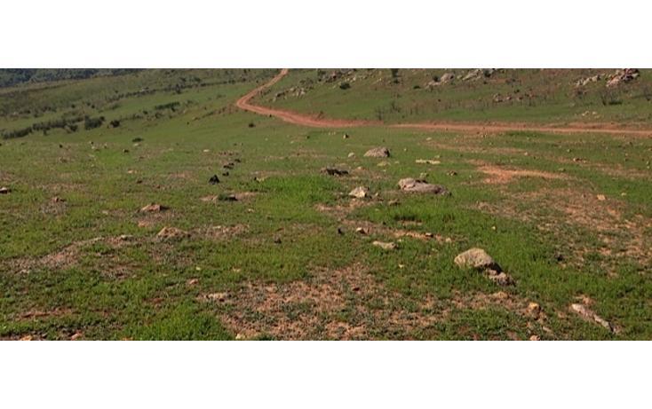 Foto de rancho en venta en  , valle san pedro, tijuana, baja california, 978305 No. 21