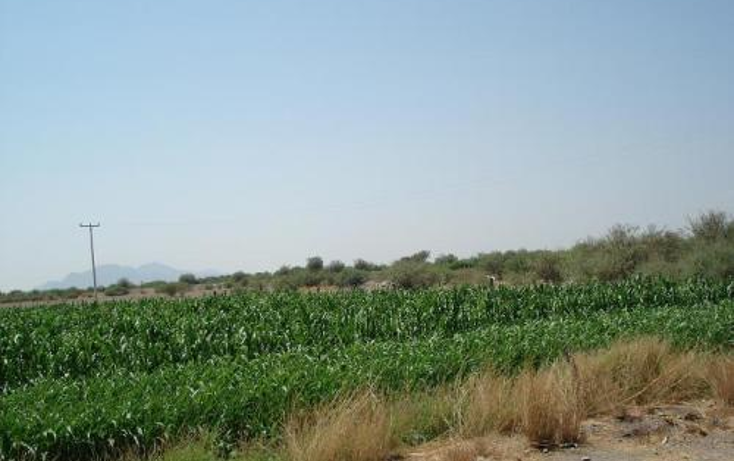 Foto de rancho en venta en  , valle verde, torre?n, coahuila de zaragoza, 395266 No. 07