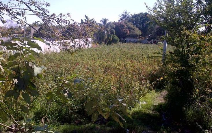 Foto de terreno habitacional en venta en  , valparaíso, temixco, morelos, 848135 No. 06
