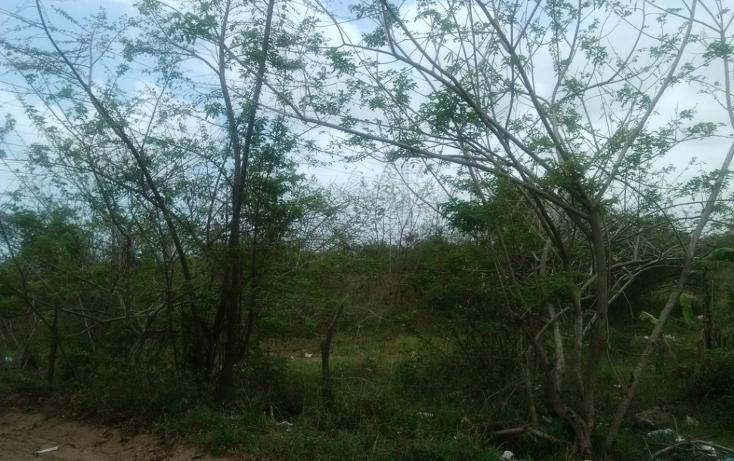 Foto de terreno habitacional en venta en  , vega de esteros, altamira, tamaulipas, 1280177 No. 01