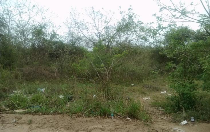 Foto de terreno habitacional en venta en  , vega de esteros, altamira, tamaulipas, 1280177 No. 02