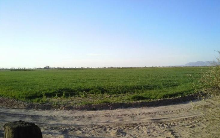 Foto de terreno habitacional en venta en  , vega de marrufo, matamoros, coahuila de zaragoza, 370981 No. 01
