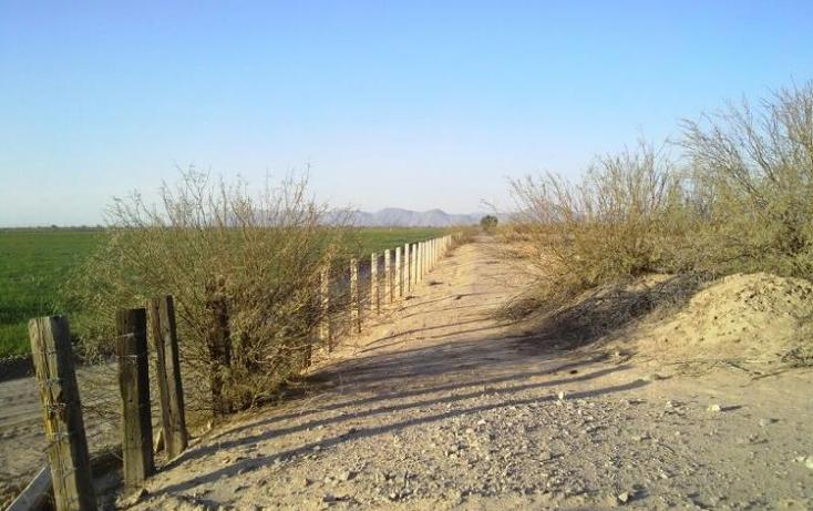 Foto de terreno habitacional en venta en  , vega de marrufo, matamoros, coahuila de zaragoza, 370981 No. 02
