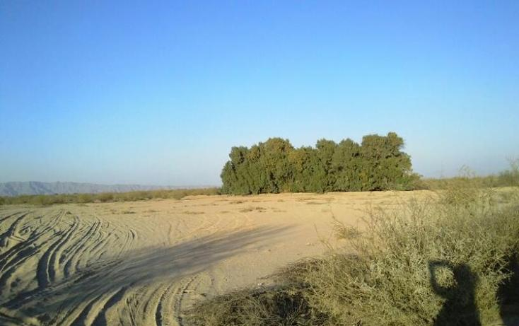 Foto de terreno habitacional en venta en  , vega de marrufo, matamoros, coahuila de zaragoza, 370981 No. 06