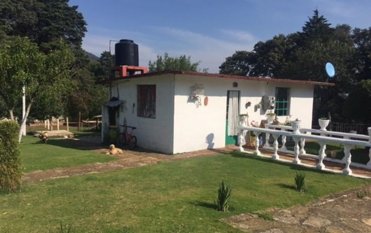 Foto de rancho en venta en  , velasco, omitlán de juárez, hidalgo, 1940039 No. 10