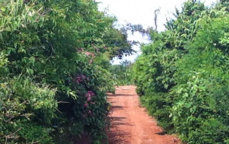 Foto de terreno comercial en venta en venadillo, el venadillo, mazatlán, sinaloa, 900269 no 05