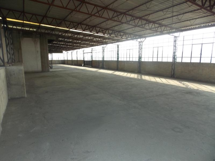 Foto de edificio en renta en  115, centro (área 8), cuauhtémoc, distrito federal, 419767 No. 05