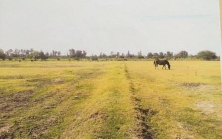 Foto de terreno habitacional en venta en  , venustiano carranza, venustiano carranza, michoacán de ocampo, 1967829 No. 01