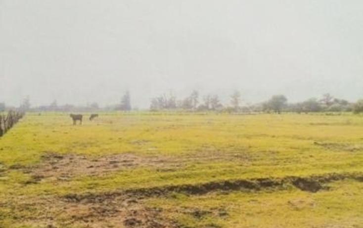 Foto de terreno habitacional en venta en  , venustiano carranza, venustiano carranza, michoacán de ocampo, 1967829 No. 04