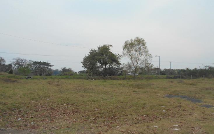 Foto de terreno habitacional en venta en  , venustiano carranza, venustiano carranza, puebla, 1928103 No. 08