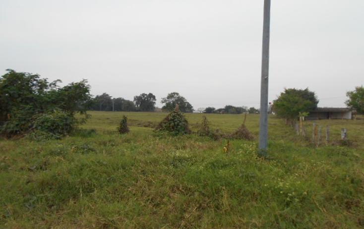 Foto de terreno habitacional en venta en  , venustiano carranza, venustiano carranza, puebla, 1928103 No. 10