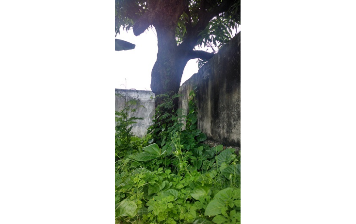 Foto de terreno habitacional en venta en  , veracruz centro, veracruz, veracruz de ignacio de la llave, 1419457 No. 03
