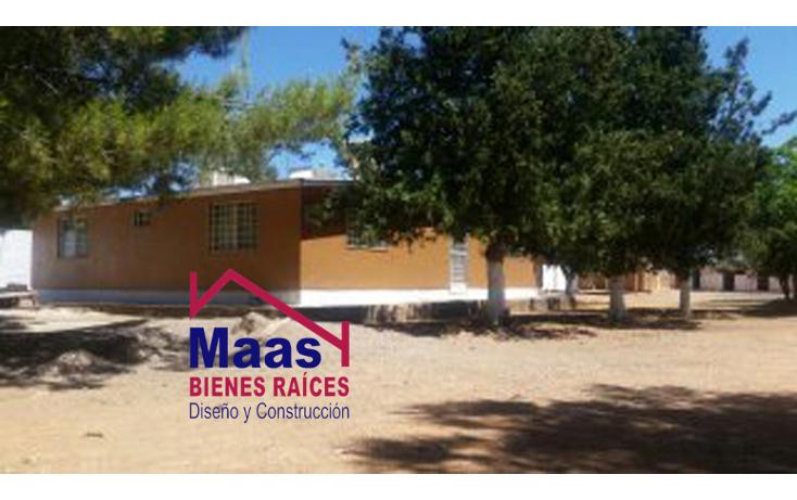 Foto de rancho en venta en  , verde, chihuahua, chihuahua, 1459971 No. 03