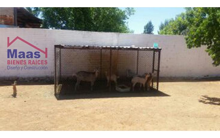 Foto de rancho en venta en  , verde, chihuahua, chihuahua, 1459971 No. 05