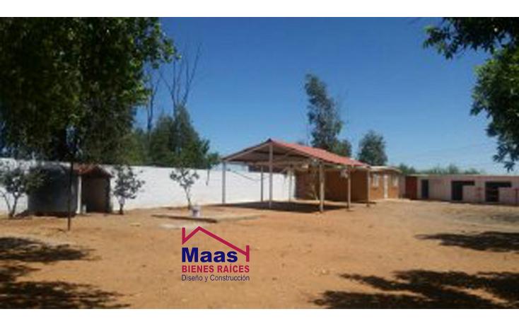 Foto de rancho en venta en  , verde, chihuahua, chihuahua, 1459971 No. 06