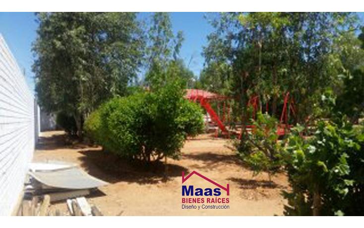 Foto de rancho en venta en  , verde, chihuahua, chihuahua, 1459971 No. 08
