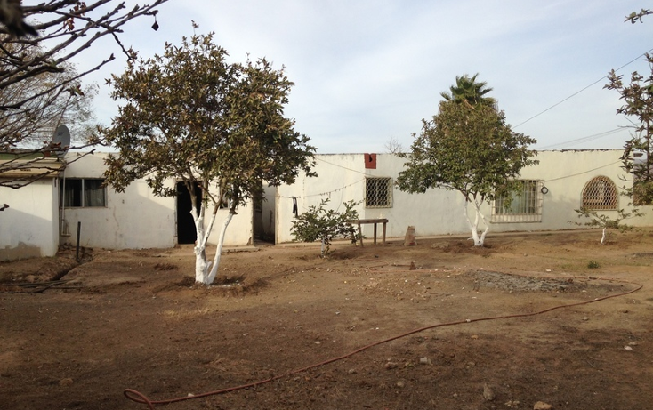 Foto de casa en venta en  , vicente guerrero, ensenada, baja california, 1501267 No. 18