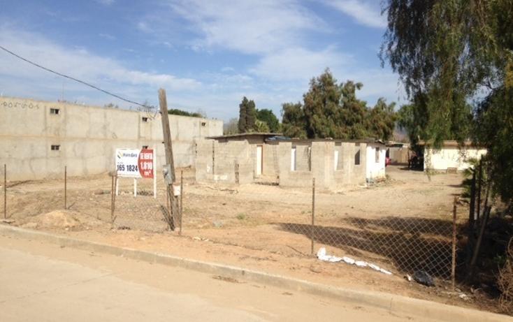 Foto de terreno comercial en venta en  , vicente guerrero, ensenada, baja california, 450738 No. 07