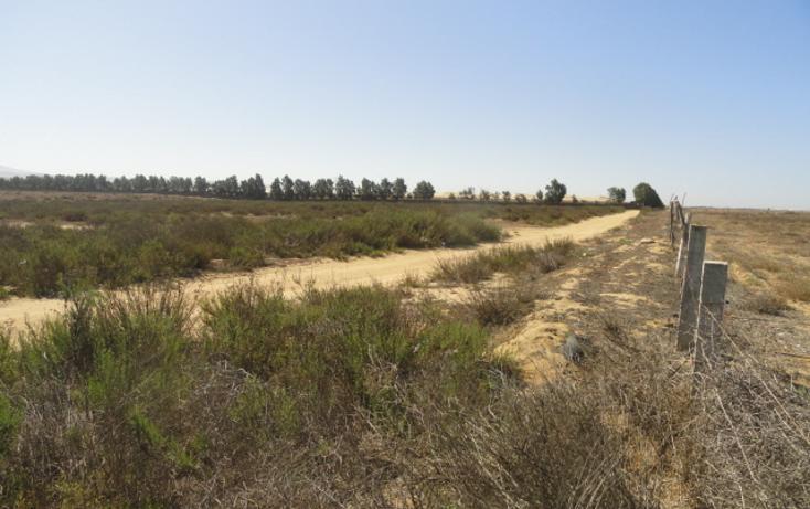 Foto de terreno habitacional en venta en  , vicente guerrero, ensenada, baja california, 486352 No. 01