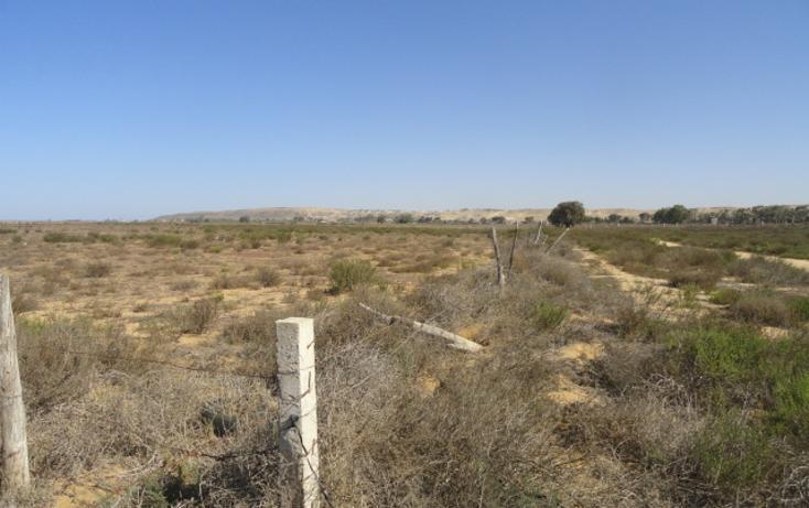 Foto de terreno habitacional en venta en  , vicente guerrero, ensenada, baja california, 486352 No. 02