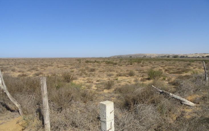 Foto de terreno habitacional en venta en  , vicente guerrero, ensenada, baja california, 486352 No. 04