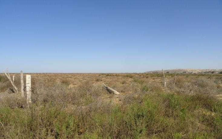 Foto de terreno habitacional en venta en  , vicente guerrero, ensenada, baja california, 486352 No. 05