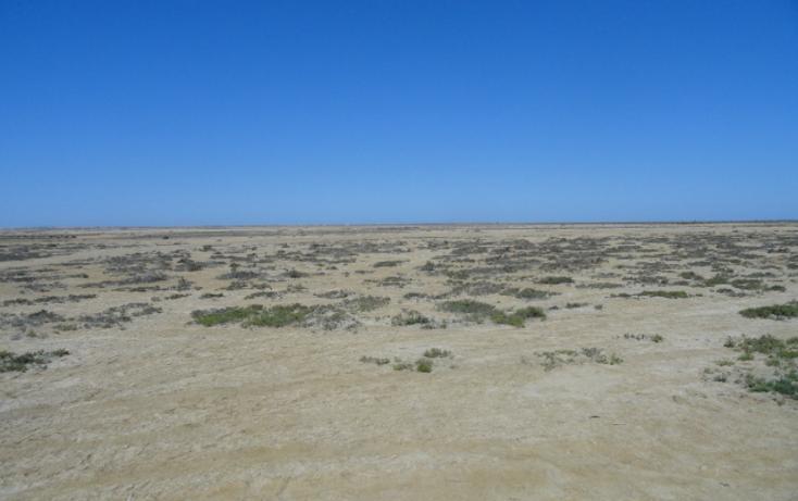 Foto de terreno habitacional en venta en  , vicente guerrero, ensenada, baja california, 486354 No. 05