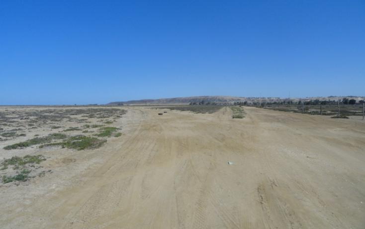 Foto de terreno habitacional en venta en  , vicente guerrero, ensenada, baja california, 486354 No. 06