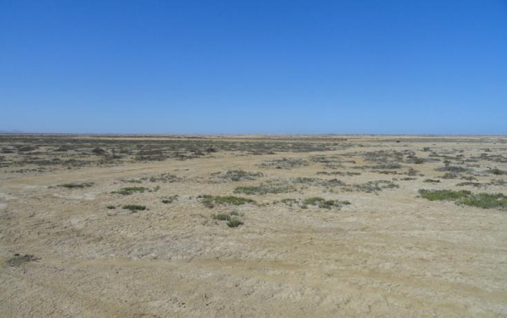 Foto de terreno habitacional en venta en  , vicente guerrero, ensenada, baja california, 486354 No. 07