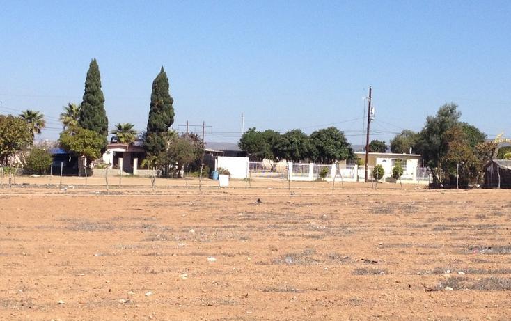 Foto de terreno habitacional en venta en  , vicente guerrero, ensenada, baja california, 532652 No. 04