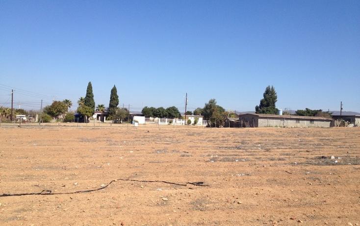 Foto de terreno habitacional en venta en  , vicente guerrero, ensenada, baja california, 532652 No. 06