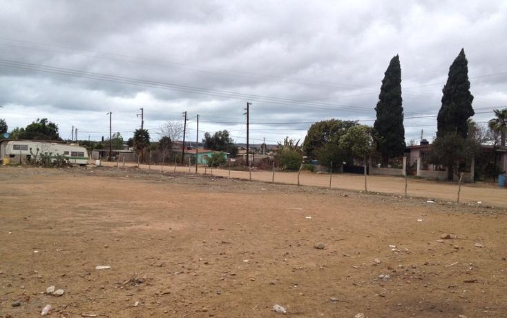 Foto de terreno habitacional en venta en  , vicente guerrero, ensenada, baja california, 532652 No. 11