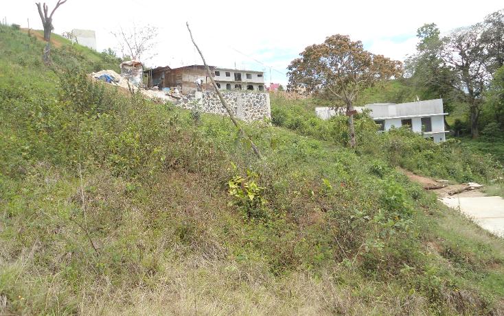Foto de terreno habitacional en venta en  , vicente guerrero, xalapa, veracruz de ignacio de la llave, 1275085 No. 01