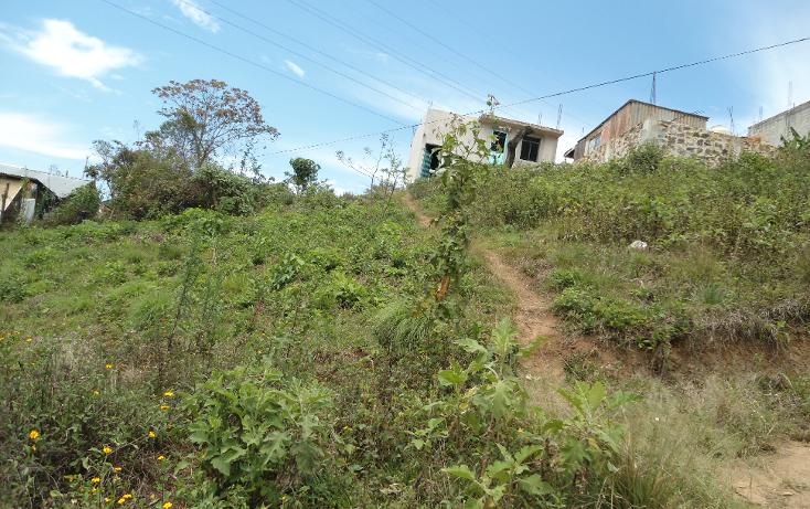 Foto de terreno habitacional en venta en  , vicente guerrero, xalapa, veracruz de ignacio de la llave, 1275085 No. 03