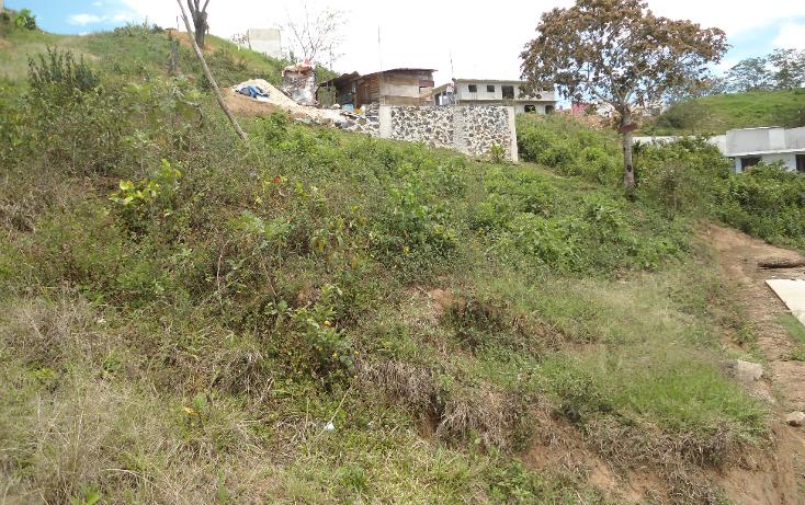 Foto de terreno habitacional en venta en  , vicente guerrero, xalapa, veracruz de ignacio de la llave, 1275085 No. 04