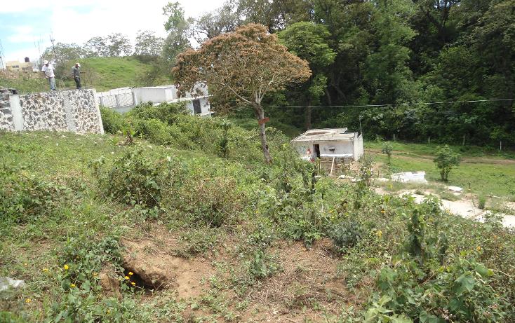 Foto de terreno habitacional en venta en  , vicente guerrero, xalapa, veracruz de ignacio de la llave, 1275085 No. 06