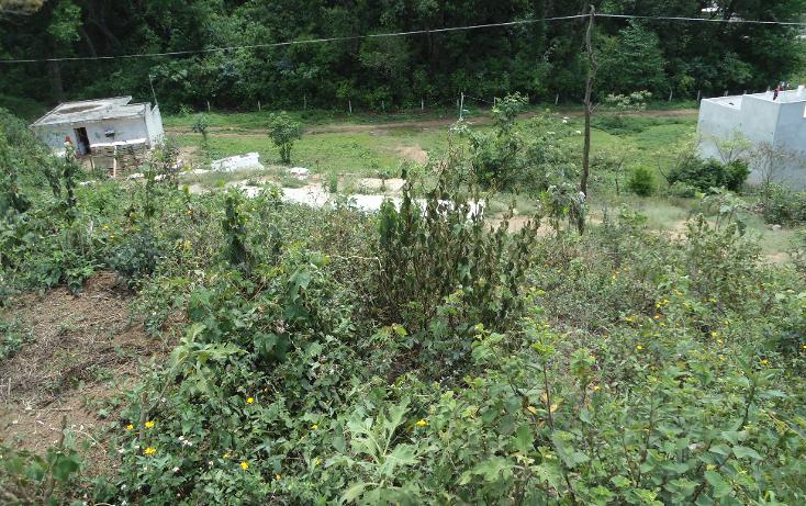 Foto de terreno habitacional en venta en  , vicente guerrero, xalapa, veracruz de ignacio de la llave, 1275085 No. 07
