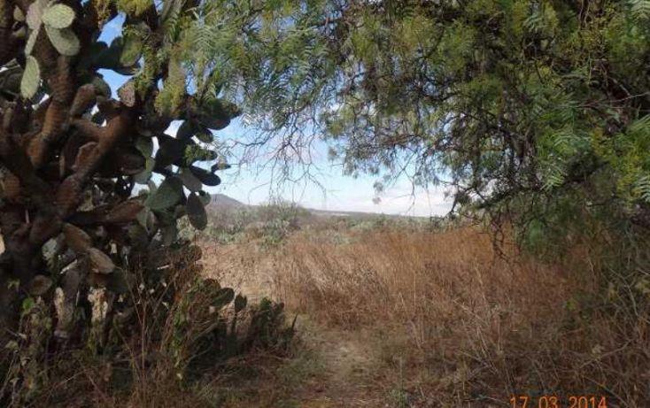 Foto de terreno habitacional en venta en vicente villagran 17, el fresnillo, nopala de villagrán, hidalgo, 1076273 no 06