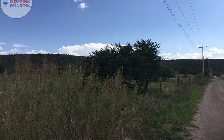 Foto de terreno habitacional en venta en l 64 , labor de guadalupe, durango, durango, 2724848 No. 03