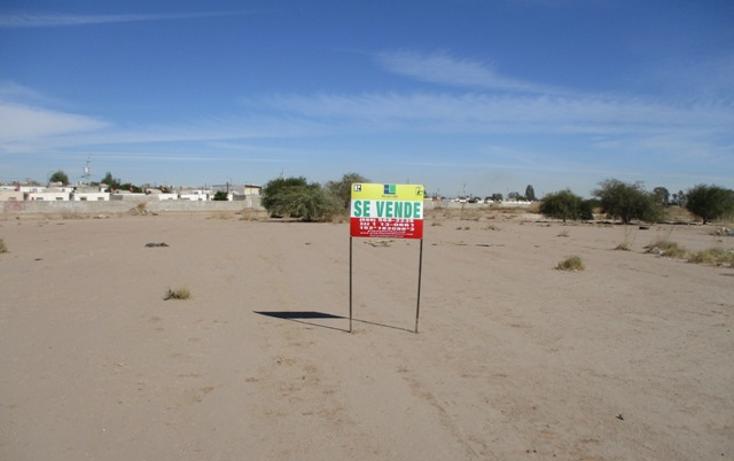 Foto de terreno habitacional en venta en  , victoria residencial, mexicali, baja california, 1664620 No. 01