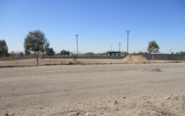 Foto de terreno habitacional en venta en  , victoria residencial, mexicali, baja california, 1664620 No. 06