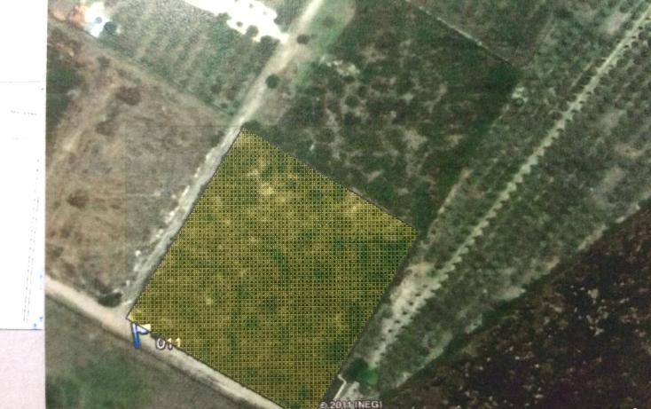 Foto de terreno habitacional en venta en  , victoria, victoria, tamaulipas, 1911966 No. 02