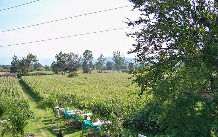 Foto de terreno comercial en venta en  , villa corona centro, villa corona, jalisco, 1489717 No. 01