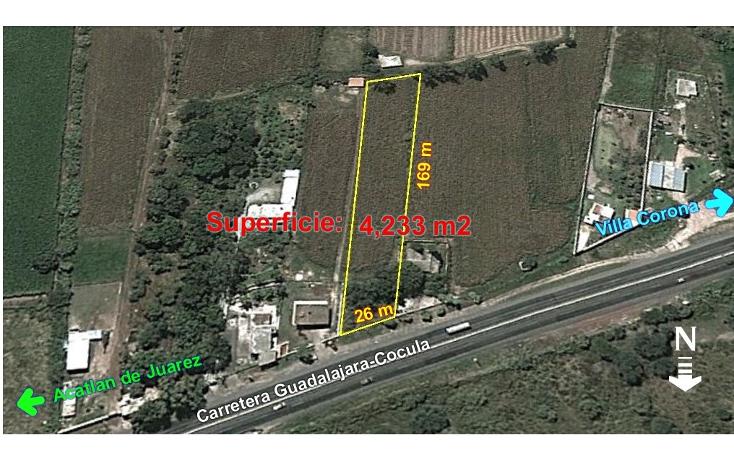 Foto de terreno comercial en venta en  , villa corona centro, villa corona, jalisco, 1489717 No. 02