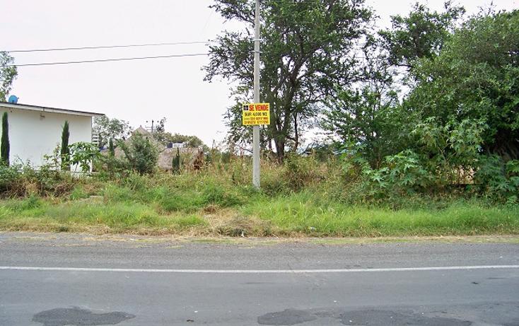 Foto de terreno comercial en venta en  , villa corona centro, villa corona, jalisco, 1489717 No. 03