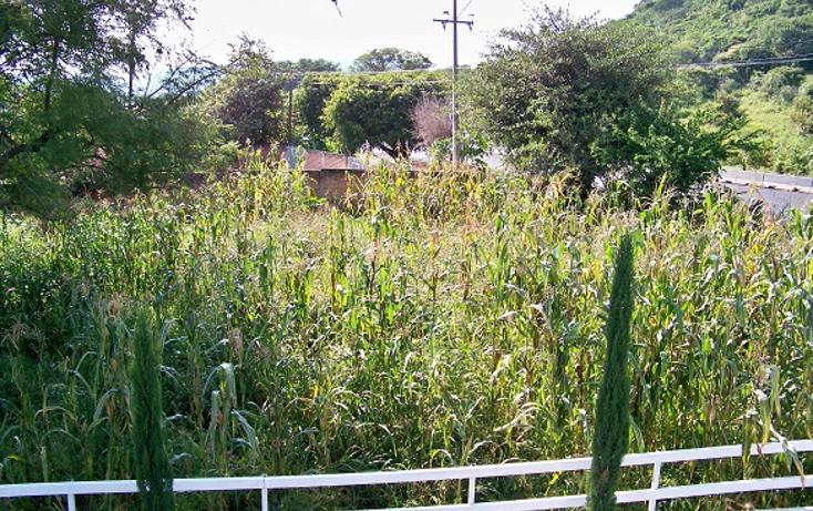 Foto de terreno comercial en venta en  , villa corona centro, villa corona, jalisco, 1489717 No. 05