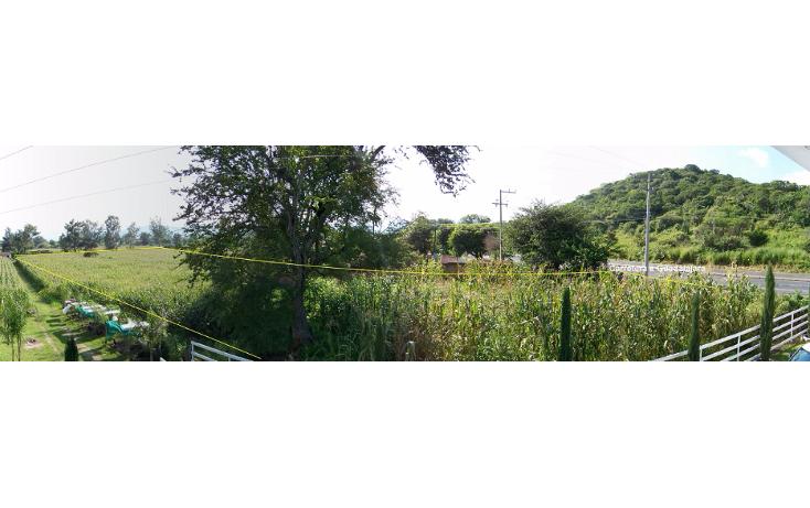 Foto de terreno comercial en venta en  , villa corona centro, villa corona, jalisco, 1489717 No. 06