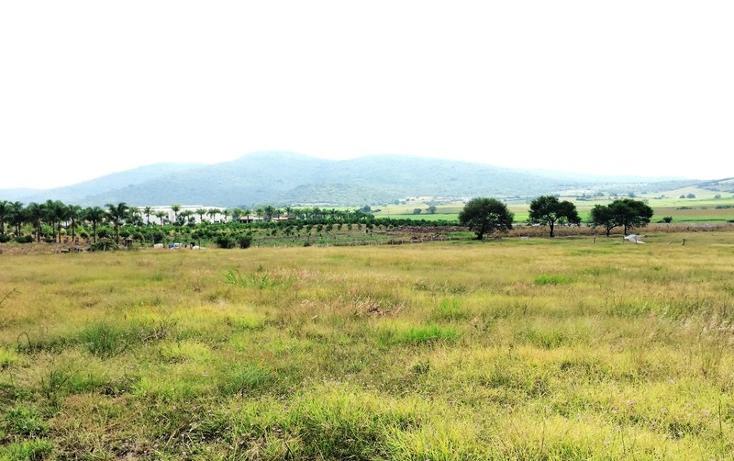 Foto de terreno habitacional en venta en  , villa corona centro, villa corona, jalisco, 1665619 No. 03