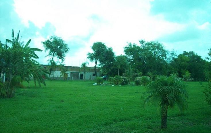 Foto de terreno habitacional en venta en  , villa corona centro, villa corona, jalisco, 2034134 No. 06