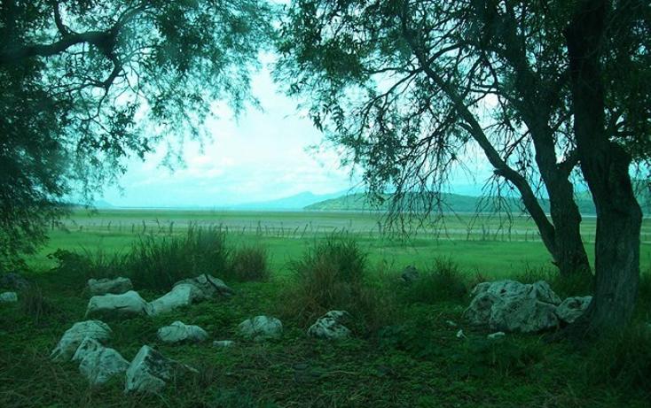 Foto de terreno habitacional en venta en  , villa corona centro, villa corona, jalisco, 2034134 No. 11